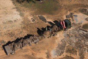 Aperura-Elefantes