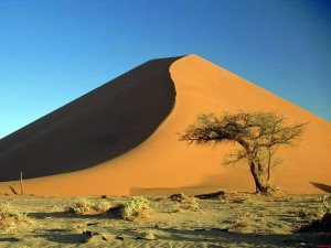 Desierto-Namibia-papers