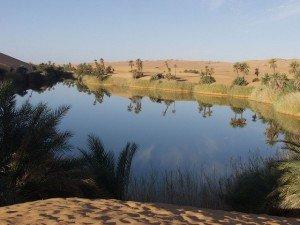 Oasis-Libia