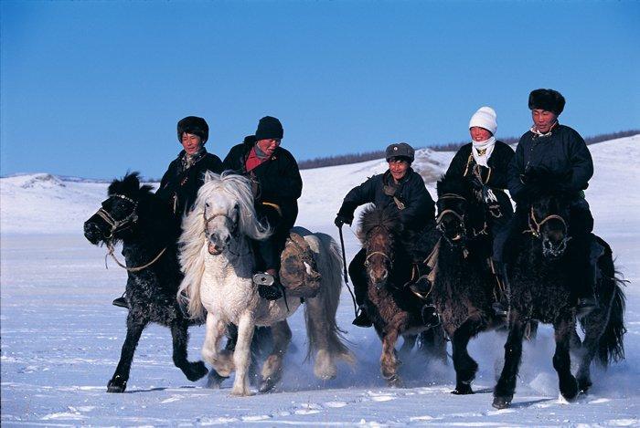 Los jóvenes mongoles se visitan y socializan entre ellos confiando en sus caballos,  en los que se trasladan de uno a otro sitio con seguridad.